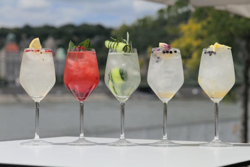 Gin Tonica koktél varriációk a Duna partján